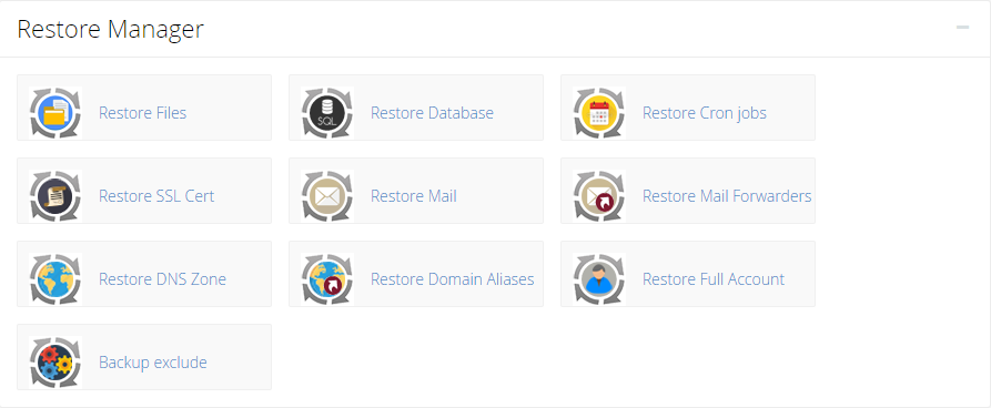 Restore Manager